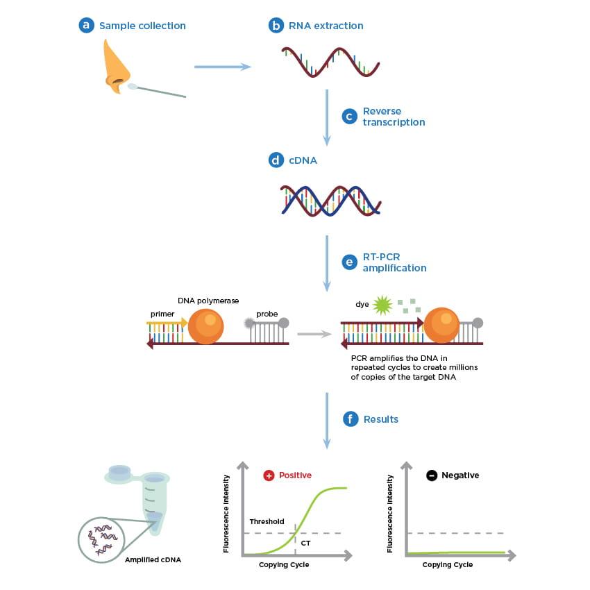 covid19-molecular-testing-basics